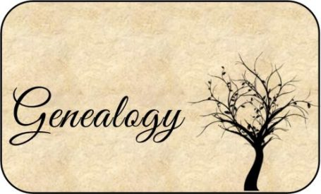 my-genealogy-picture-2-496x300