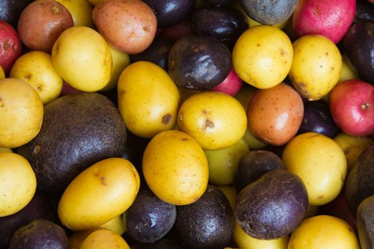 colorful-potatoes_800