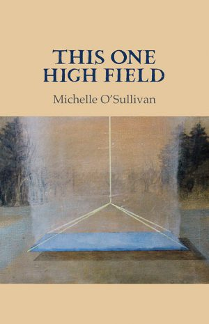 this-one-high-field-300x465