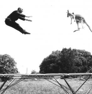 conskyhighsports-10-interesting-facts-about-trampoline-parks-kangaroo-294x300-1